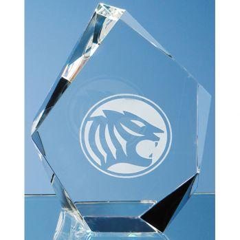 Bespoke 13cm Optic Facet Iceberg Award