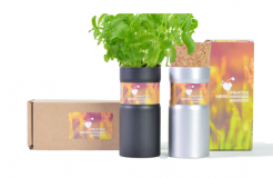 Promotional Desktop Garden