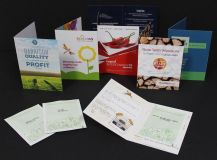 Promotional Seed Packet Greeting/Information Card