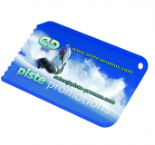 Digitally Printed Credit Card Ice Scraper