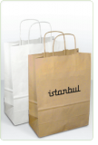 Kraft paper Bag with twisted paper handles -Medium